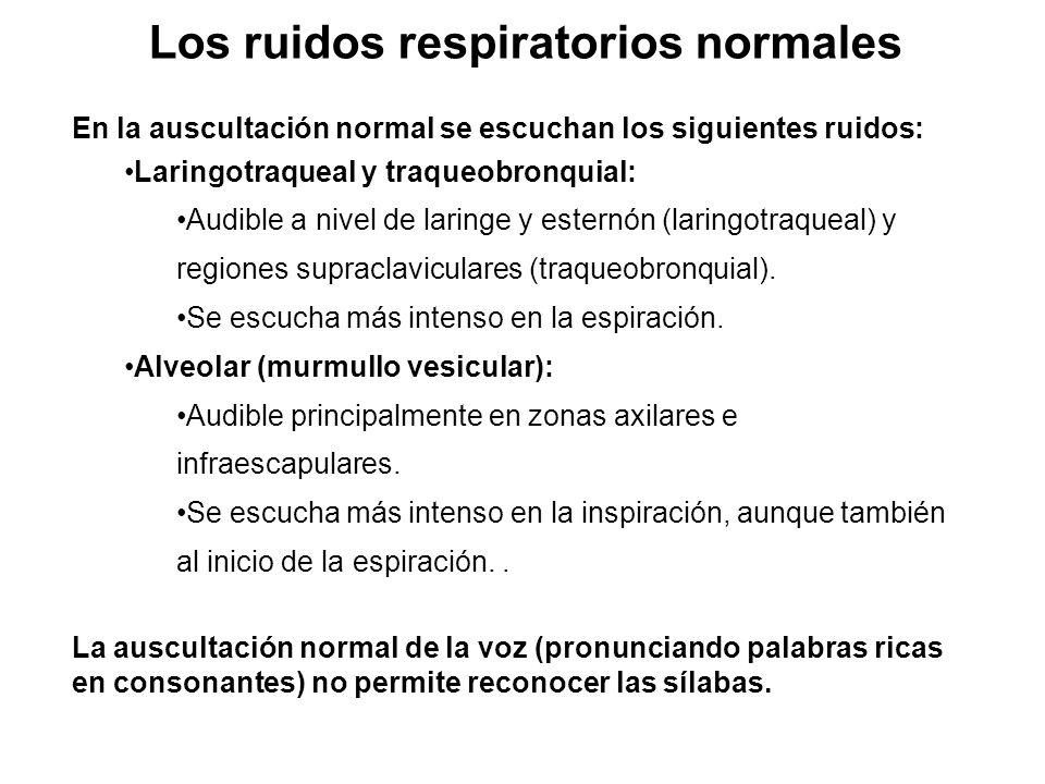 Los ruidos respiratorios normales En la auscultación normal se escuchan los siguientes ruidos: Laringotraqueal y traqueobronquial: Audible a nivel de