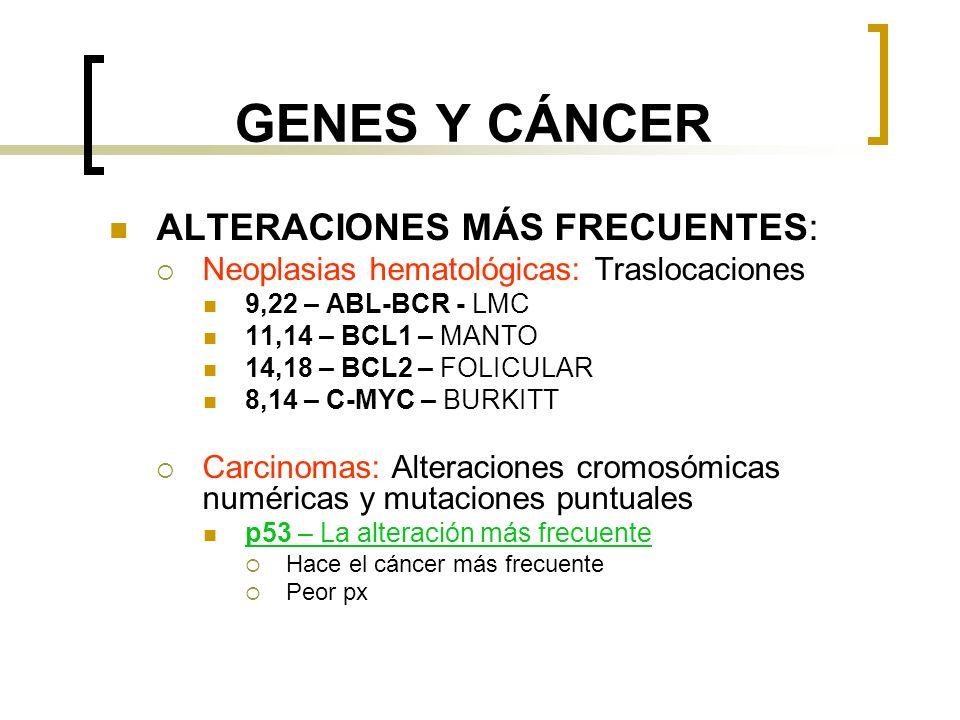 GENES Y CÁNCER ALTERACIONES MÁS FRECUENTES: Neoplasias hematológicas: Traslocaciones 9,22 – ABL-BCR - LMC 11,14 – BCL1 – MANTO 14,18 – BCL2 – FOLICULAR 8,14 – C-MYC – BURKITT Carcinomas: Alteraciones cromosómicas numéricas y mutaciones puntuales p53 – La alteración más frecuente Hace el cáncer más frecuente Peor px