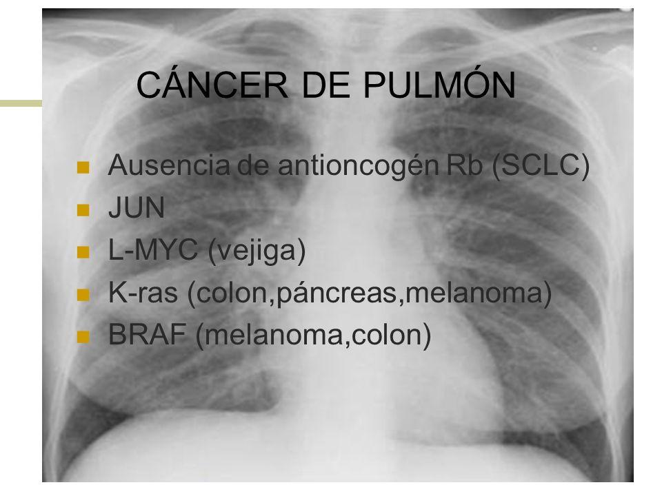 CÁNCER DE PULMÓN Ausencia de antioncogén Rb (SCLC) JUN L-MYC (vejiga) K-ras (colon,páncreas,melanoma) BRAF (melanoma,colon)
