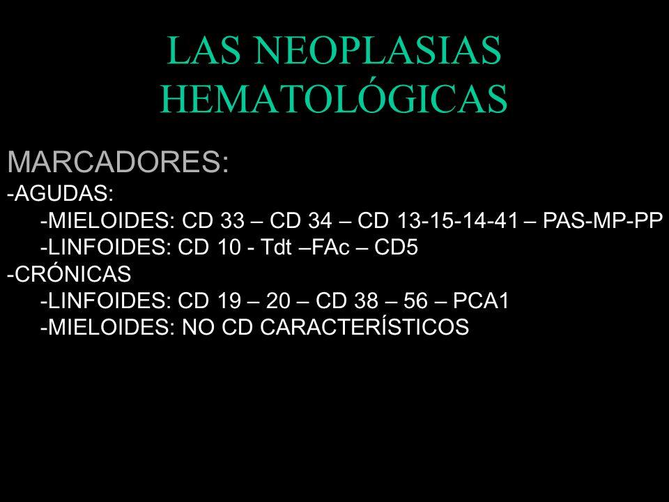 LAS NEOPLASIAS HEMATOLÓGICAS CLÍNICA: CITOPENIAS: -MÁS FRECUENTES Y PRECOCES EN AGUDAS CLÍNICA: HIPERVISCOSIDAD -GRAN CELULARIDAD O CÉLULAS GRANDES -(