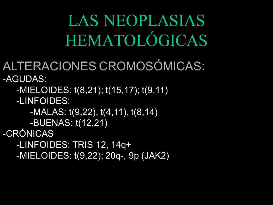 LAS NEOPLASIAS HEMATOLÓGICAS MARCADORES: -AGUDAS: -MIELOIDES: CD 33 – CD 34 – CD 13-15-14-41 – PAS-MP-PP -LINFOIDES: CD 10 - Tdt –FAc – CD5 -CRÓNICAS