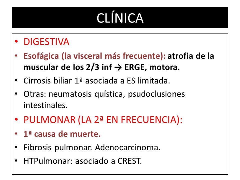 DIGESTIVA Esofágica (la visceral más frecuente): atrofia de la muscular de los 2/3 inf ERGE, motora. Cirrosis biliar 1ª asociada a ES limitada. Otras: