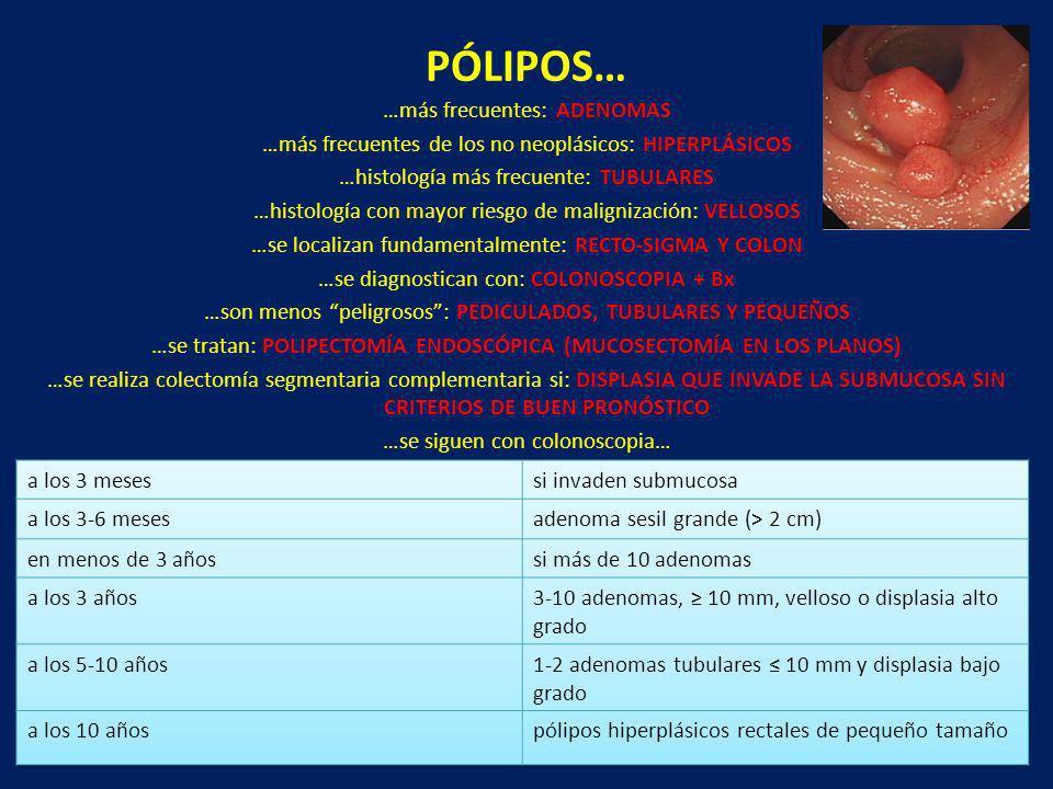 PÓLIPOS… …más frecuentes: ADENOMAS …más frecuentes de los no neoplásicos: HIPERPLÁSICOS …histología más frecuente: TUBULARES …histología con mayor rie