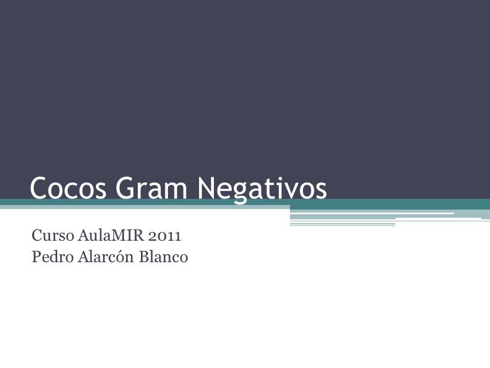 Cocos Gram Negativos Curso AulaMIR 2011 Pedro Alarcón Blanco