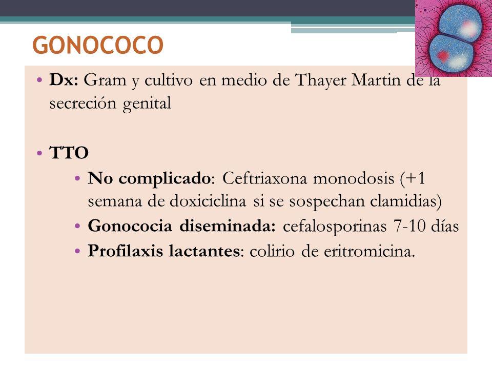 Dx: Gram y cultivo en medio de Thayer Martin de la secreción genital TTO No complicado: Ceftriaxona monodosis (+1 semana de doxiciclina si se sospecha