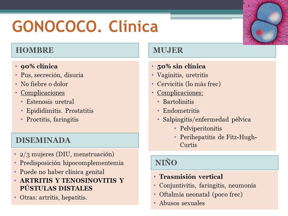 GONOCOCO. Clínica HOMBREMUJER 90% clínica Pus, secreción, disuria No fiebre o dolor Complicaciones Estenosis uretral Epididimitis. Prostatitis Proctit
