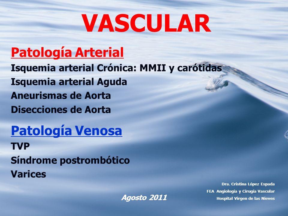 VASCULAR Patología Arterial Isquemia arterial Crónica: MMII y carótidas Isquemia arterial Aguda Aneurismas de Aorta Disecciones de Aorta Patología Ven