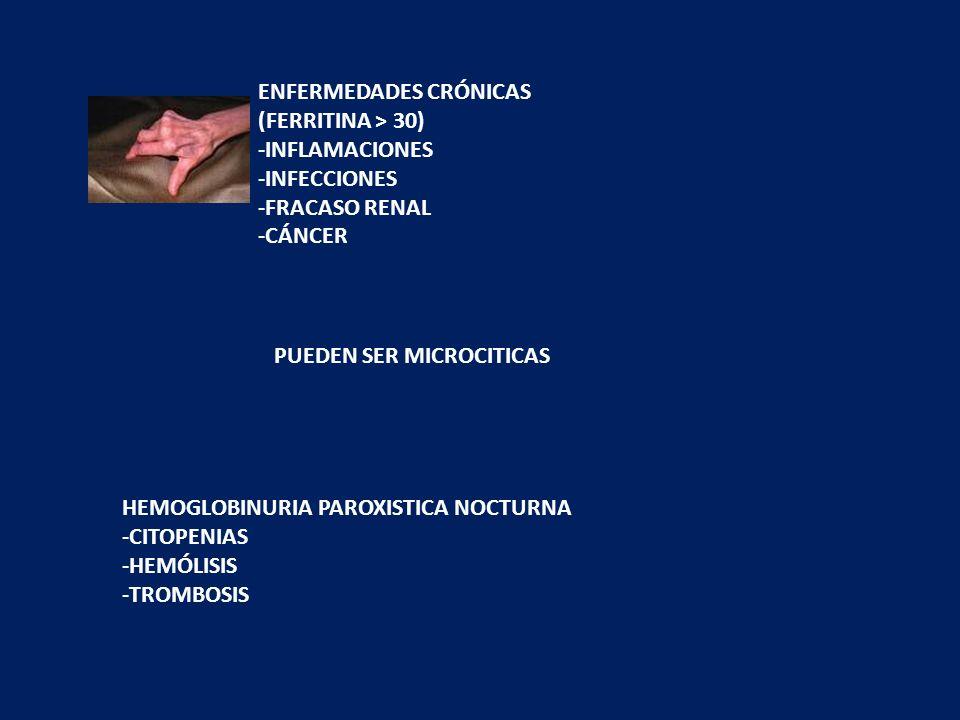 OTRAS MICROCITOSIS TALASEMIA CLINICA GRAVE NIÑOS FERRITINA > 50 DIANOCITOS – P.BAS ELECTROFORESIS HB SEUDOPOLIGLOBULIA 6mill Ht; Hb 11; VCM 70 SIDEROB