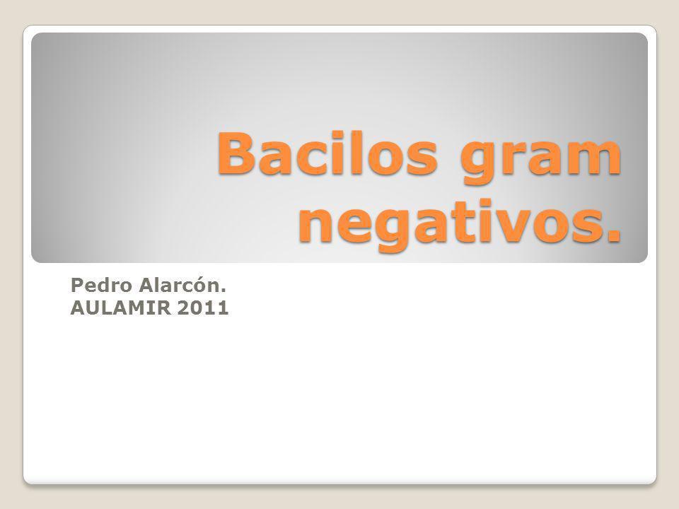 Bacilos gram negativos. Pedro Alarcón. AULAMIR 2011