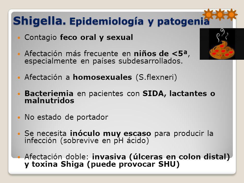 Shigella. Epidemiología y patogenia Contagio feco oral y sexual Afectación más frecuente en niños de <5ª, especialmente en países subdesarrollados. Af
