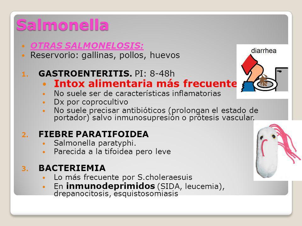 Salmonella OTRAS SALMONELOSIS: Reservorio: gallinas, pollos, huevos 1. GASTROENTERITIS. PI: 8-48h Intox alimentaria más frecuente No suele ser de cara