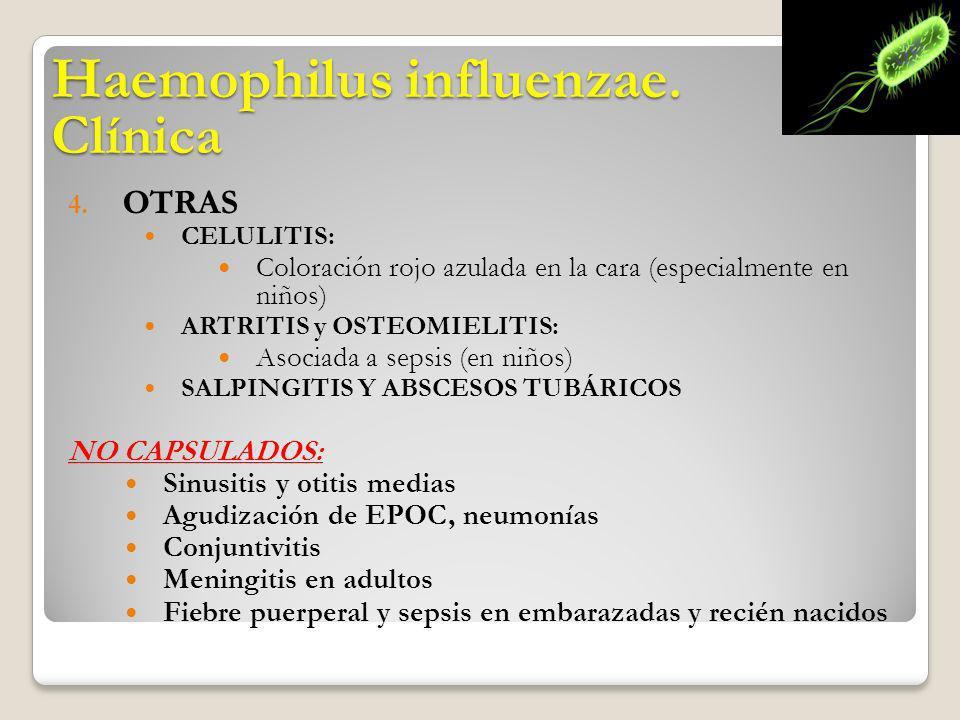 4. OTRAS CELULITIS: Coloración rojo azulada en la cara (especialmente en niños) ARTRITIS y OSTEOMIELITIS: Asociada a sepsis (en niños) SALPINGITIS Y A