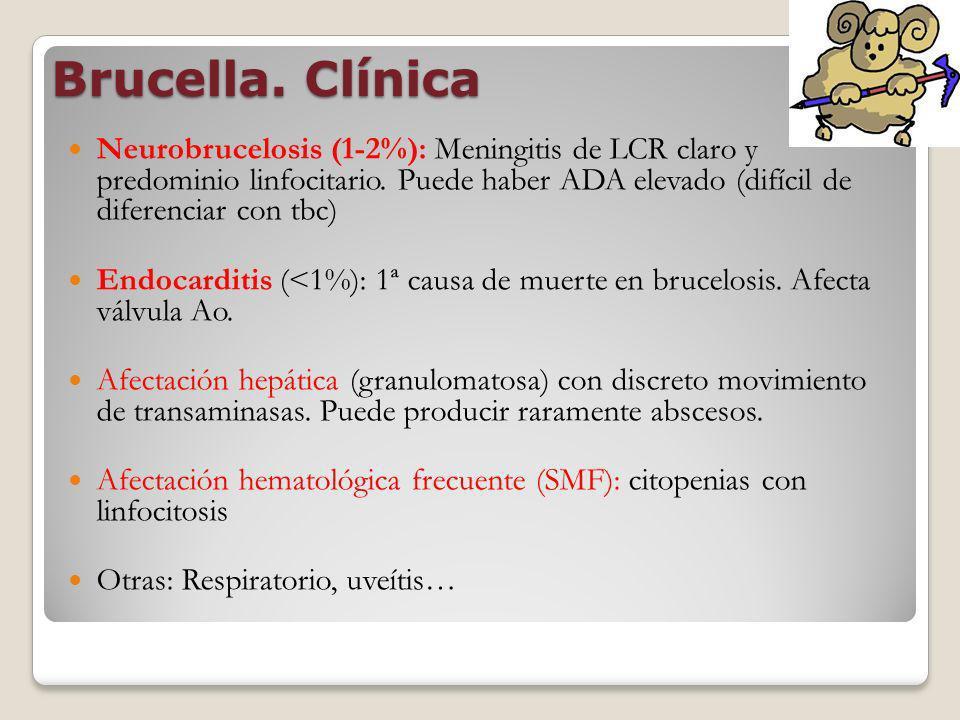 Brucella. Clínica Neurobrucelosis (1-2%): Meningitis de LCR claro y predominio linfocitario. Puede haber ADA elevado (difícil de diferenciar con tbc)