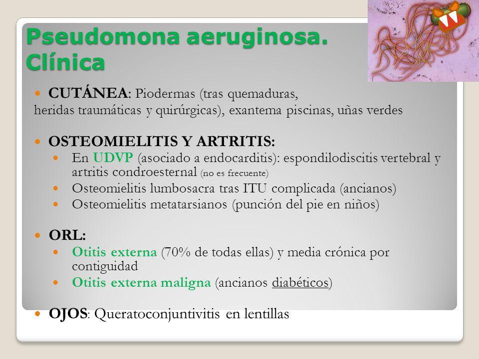 Pseudomona aeruginosa. Clínica CUTÁNEA: Piodermas (tras quemaduras, heridas traumáticas y quirúrgicas), exantema piscinas, uñas verdes OSTEOMIELITIS Y