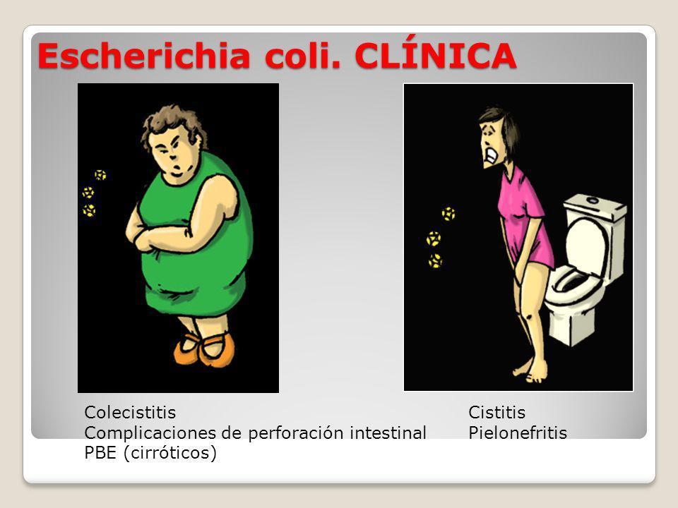 Escherichia coli.CLÍNICA 3.