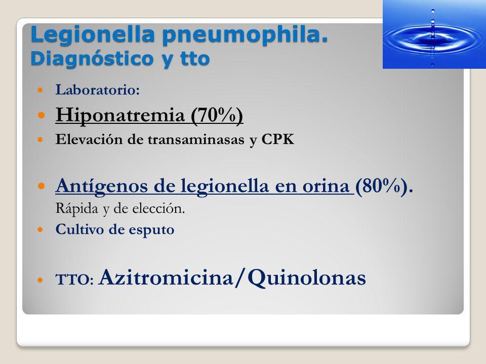 Legionella pneumophila. Diagnóstico y tto Laboratorio: Hiponatremia (70%) Elevación de transaminasas y CPK Antígenos de legionella en orina (80%). Ráp