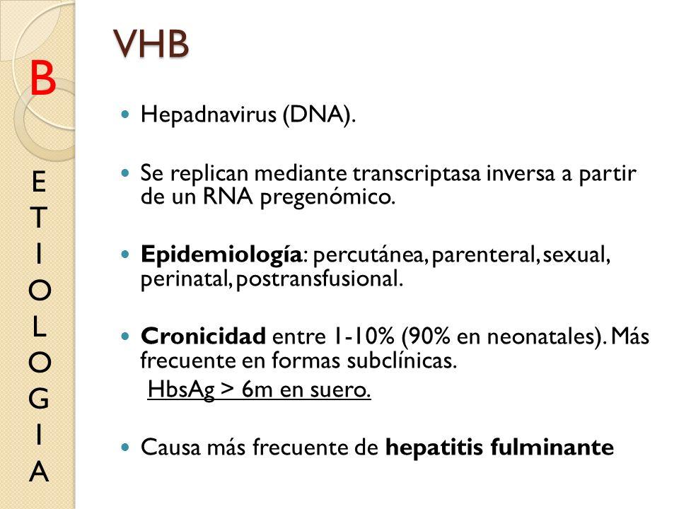 VHB Hepadnavirus (DNA). Se replican mediante transcriptasa inversa a partir de un RNA pregenómico. Epidemiología: percutánea, parenteral, sexual, peri