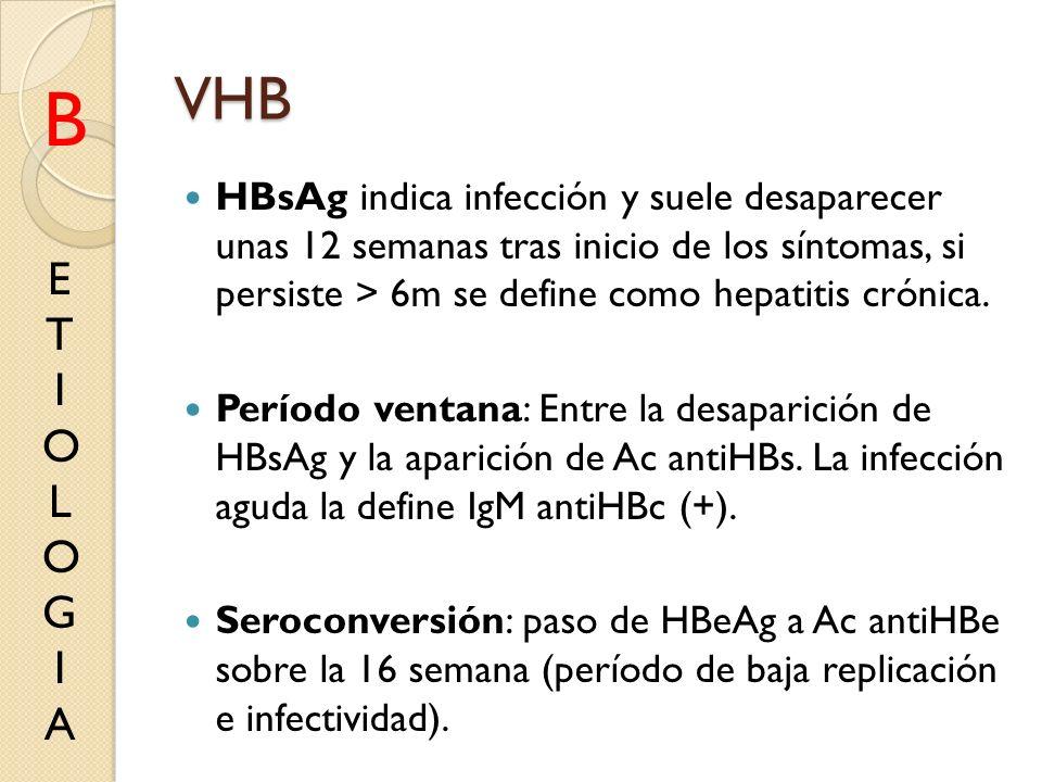 VHB HBsAg indica infección y suele desaparecer unas 12 semanas tras inicio de los síntomas, si persiste > 6m se define como hepatitis crónica. Período