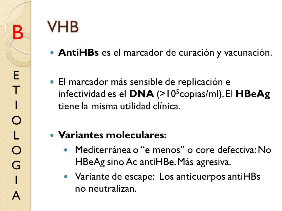VHB AntiHBs es el marcador de curación y vacunación. El marcador más sensible de replicación e infectividad es el DNA (>10 5 copias/ml). El HBeAg tien