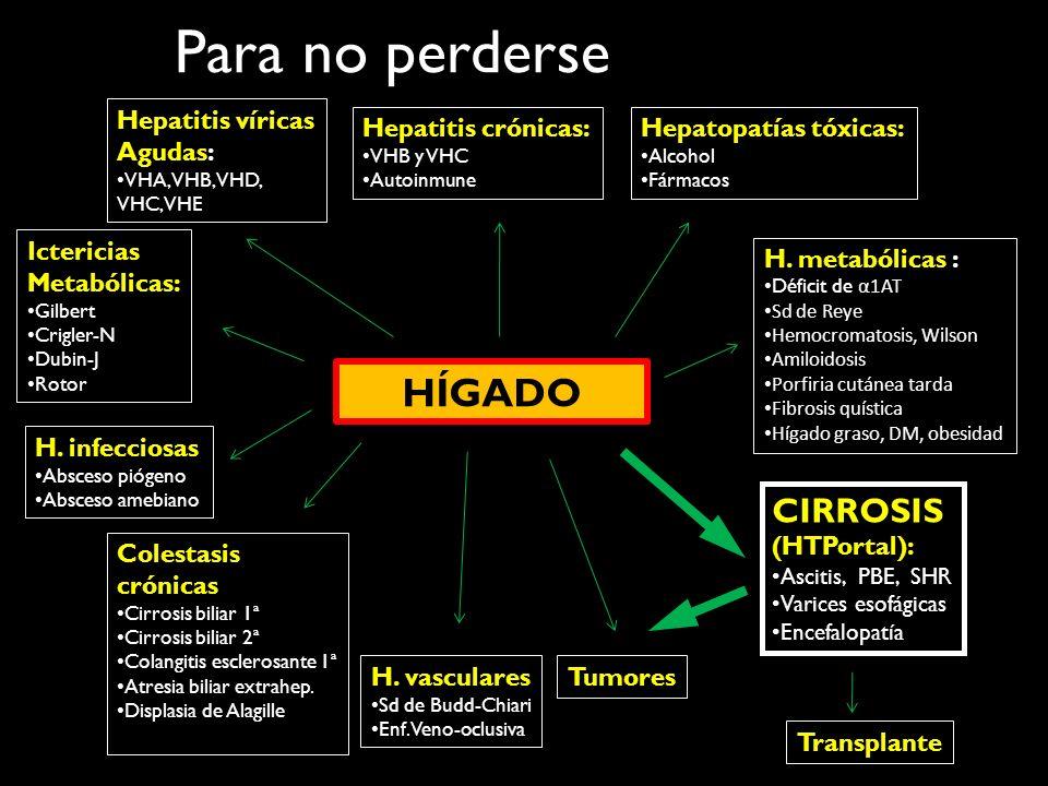 Para no perderse HÍGADO Ictericias Metabólicas: Gilbert Crigler-N Dubin-J Rotor Hepatitis víricas Agudas: VHA, VHB, VHD, VHC, VHE Hepatitis crónicas: