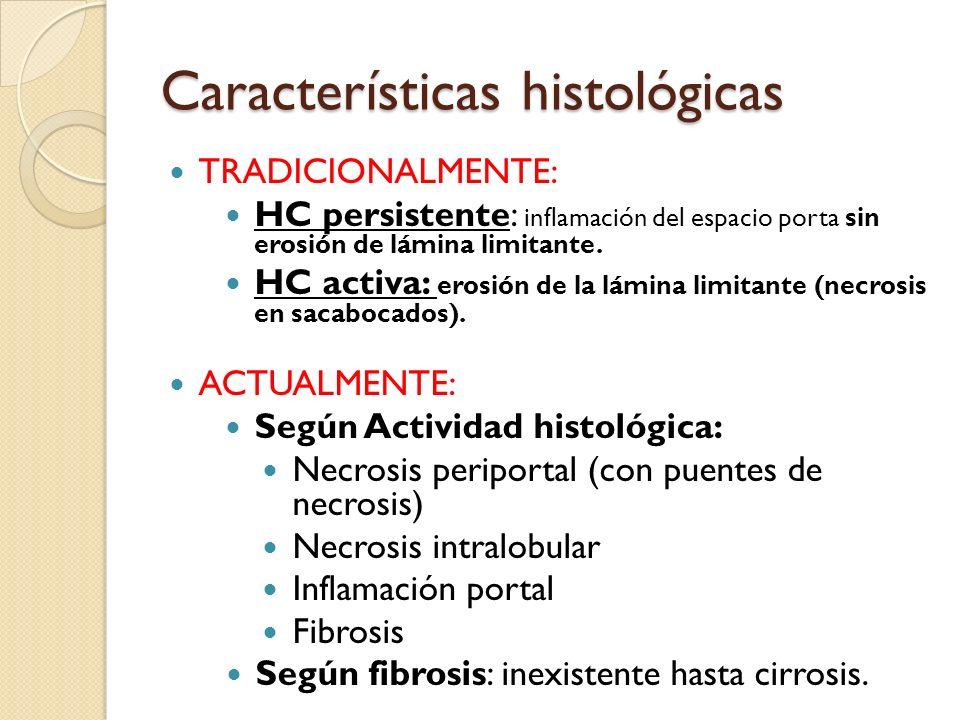 Características histológicas TRADICIONALMENTE: HC persistente: inflamación del espacio porta sin erosión de lámina limitante. HC activa: erosión de la