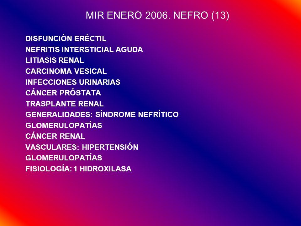 MIR ENERO 2006.