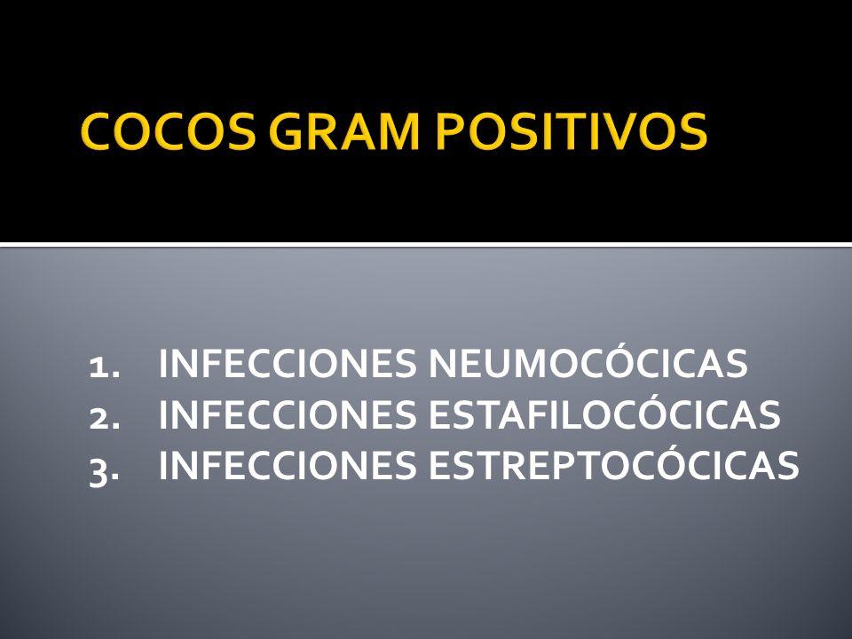La cápsula le da patogenicidad por resistencia a la fagocitosis (los Ac.