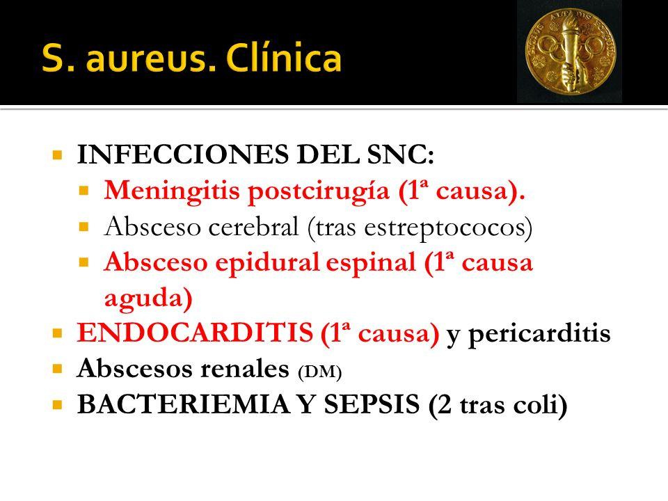 INFECCIONES DEL SNC: Meningitis postcirugía (1ª causa). Absceso cerebral (tras estreptococos) Absceso epidural espinal (1ª causa aguda) ENDOCARDITIS (