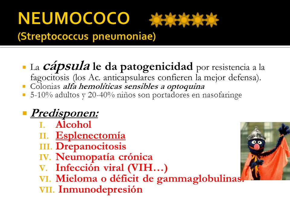 MATERNAS Sepsis puerperal.Corioamnionitis.