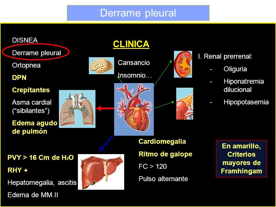 Derrame pleural CLINICA DISNEA Derrame pleural Ortopnea DPN Crepitantes Asma cardial (sibilantes) Edema agudo de pulmón PVY > 16 Cm de H 2 O RHY + Hep