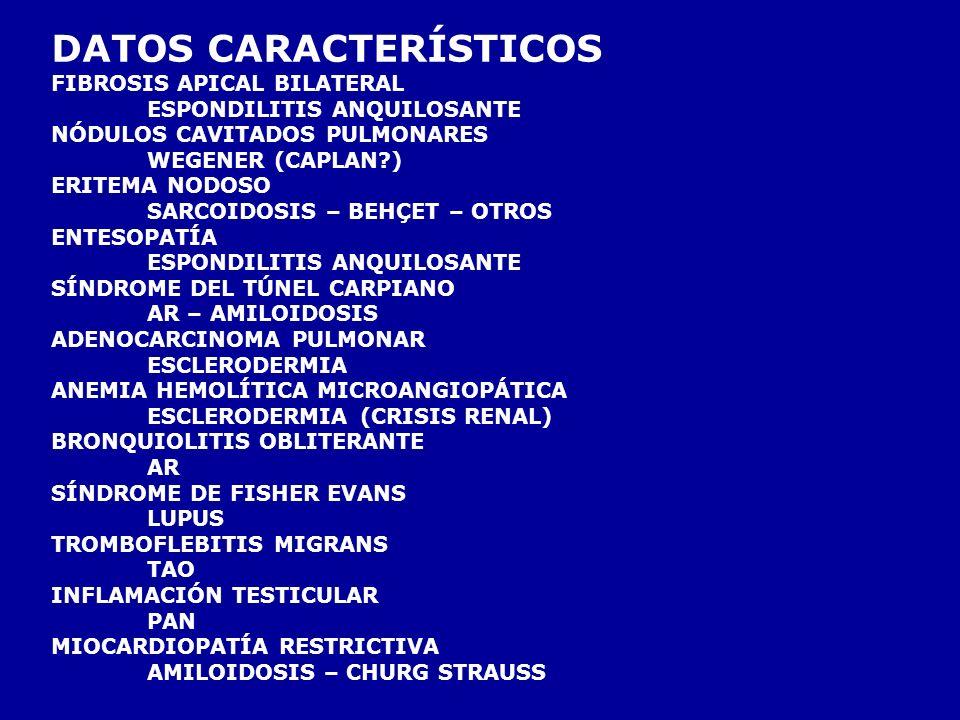 DATOS CARACTERÍSTICOS FIBROSIS APICAL BILATERAL ESPONDILITIS ANQUILOSANTE NÓDULOS CAVITADOS PULMONARES WEGENER (CAPLAN?) ERITEMA NODOSO SARCOIDOSIS – BEHÇET – OTROS ENTESOPATÍA ESPONDILITIS ANQUILOSANTE SÍNDROME DEL TÚNEL CARPIANO AR – AMILOIDOSIS ADENOCARCINOMA PULMONAR ESCLERODERMIA ANEMIA HEMOLÍTICA MICROANGIOPÁTICA ESCLERODERMIA (CRISIS RENAL) BRONQUIOLITIS OBLITERANTE AR SÍNDROME DE FISHER EVANS LUPUS TROMBOFLEBITIS MIGRANS TAO INFLAMACIÓN TESTICULAR PAN MIOCARDIOPATÍA RESTRICTIVA AMILOIDOSIS – CHURG STRAUSS