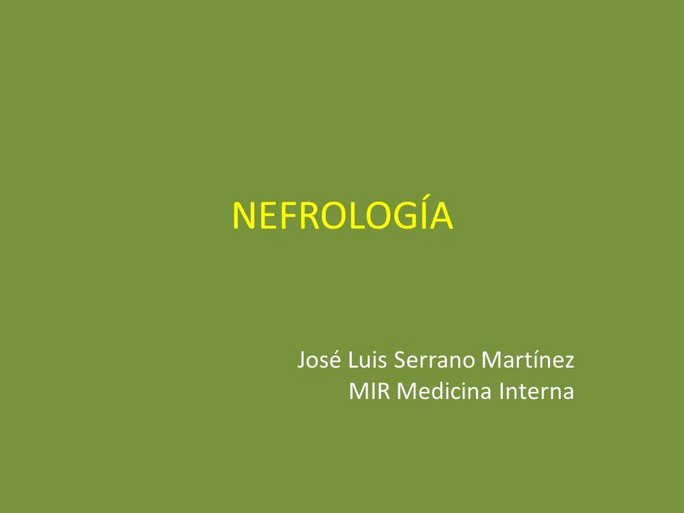 NEFROLOGÍA José Luis Serrano Martínez MIR Medicina Interna