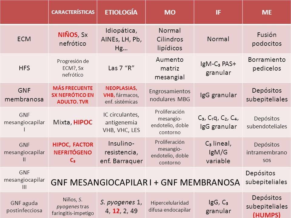 CARACTERÍSTICAS ETIOLOGÍAMOIFME ECM NIÑOS, Sx nefrótico Idiopática, AINEs, LH, Pb, Hg… Normal Cilindros lipídicos Normal Fusión podocitos HFS Progresi