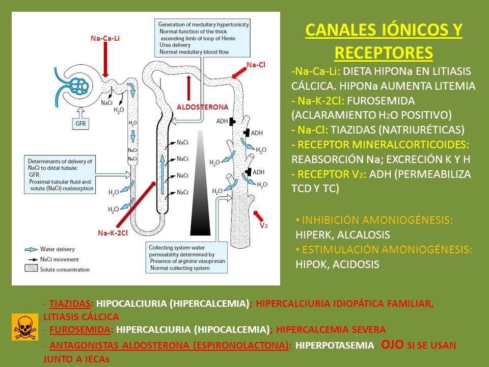 CANALES IÓNICOS Y RECEPTORES -Na-Ca-Li: DIETA HIPONa EN LITIASIS CÁLCICA. HIPONa AUMENTA LITEMIA - Na-K-2Cl: FUROSEMIDA (ACLARAMIENTO H 2 O POSITIVO)