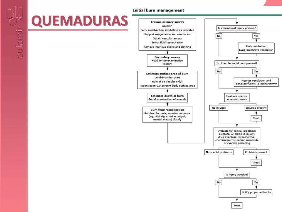 Resumen secuencia actuaciones SOPORTE INICIAL (VÍA AÉREA, VÍA IV…)EXAMEN COMPLETO (CABEZA-PIE) E HISTORIAVALORAR SUPERFICIE QUEMADA (REGLA DE LOS 9)VALORAR PROFUNDIDAD (EXAMEN DE TODOS LAS ZONAS QUEMADAS)REPOSICIÓN (RINGER 4 ml/Kg/% ?)¿LESIONES POR INHALACIÓN.