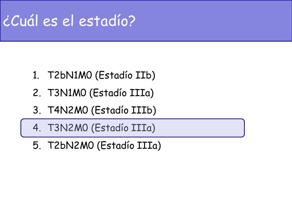 1.T2bN1M0 (Estadío IIb) 2.T3N1M0 (Estadío IIIa) 3.T4N2M0 (Estadío IIIb) 4.T3N2M0 (Estadío IIIa) 5.T2bN2M0 (Estadío IIIa) ¿Cuál es el estadío?