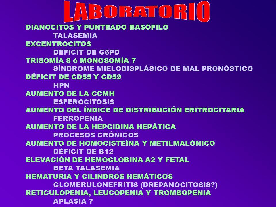 CON PÉRDIDA DE SENSIBILIDAD VIBRATORIA DÉFICIT DE B12 MICROCÍTICA CON TROMBOCITOSIS FERROPENIA CON LEUCOPENIA, ICTERICIA Y TROMBOSIS HEMOGLOBINURIA PAROXÍSTICA NOCTURNA CON DOLORES – PRIAPISMO Y HEMATURIA DREPANOCITOSIS CON LEUCOPENIA, TROMBOPENIA Y MACROCITOSIS ANEMIA REFRACTARIA MEGALOBLÁSTICA EN VIH BIEN CONTROLADO POR EL TRATAMIENTO (COTRIMOXAZOL?) MICROCÍTICA EN NIÑO CON ANTECEDENTES FAMILIARES TALASEMIA HEMOLÍTICA FAMILIAR PROVOCADA POR INFECCIONES DÉFICIT DE G6PD EN NIÑO CON NEUMONÍA Y MIRINGITIS BULLOSA CRIOAGLUTININAS EN PACIENTE CON ARTRITIS REUMATOIDE ANEMIA DE ENFERMEDADES CRÓNICAS JOVEN CON ICTERICIA – ESPLENOMEGALIA Y COLELITIASIS ESFEROCITOSIS