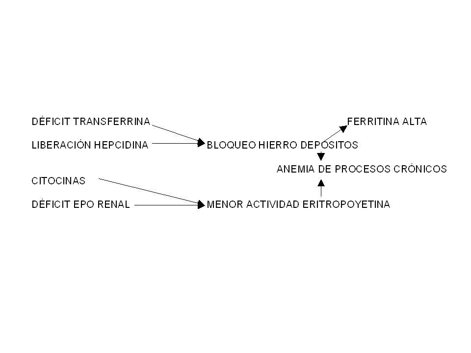 TRATAMIENTO AEC -ERITROPOYETINA (IRC – NEO….) -(HASTA Hb 10-12 Y LUEGO BAJAR DOSIS) -SI DEJAN DE RESPONDER PUEDEN SER 2 COSAS -- INFECCIÓN: -SUSPENDER EPO Y PASAR A TRANSFUSIONES -HASTA QUE SE RESUELVA -- DÉFICIT DE HIERRO -DAR HIERRO ORAL
