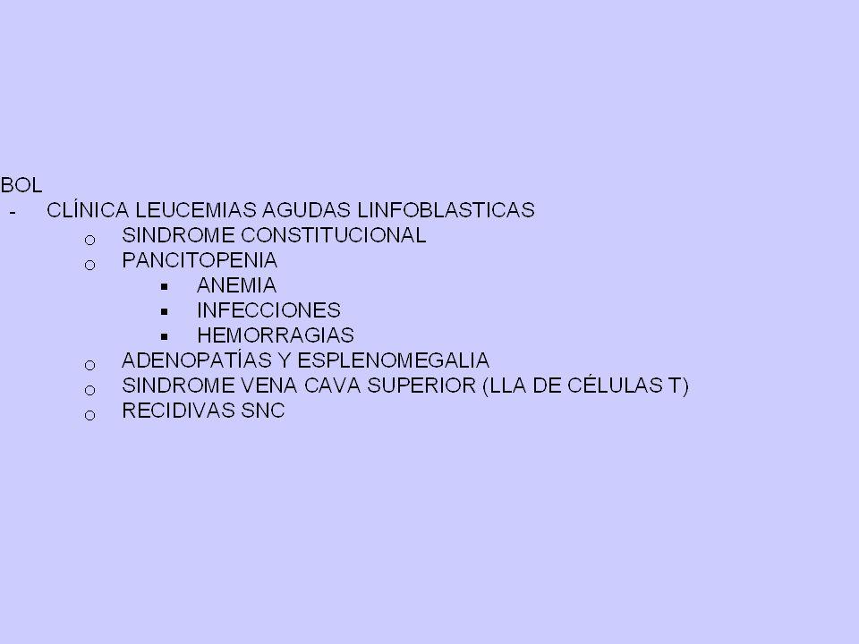 DE MÉDULA ÓSEA -INMADUROS: LLA -MADUROS: LLC (B-T) Y OTROS -PLASMATICAS: GAMMAPATÍA DE GANGLIOS LINFOMA (B-T)