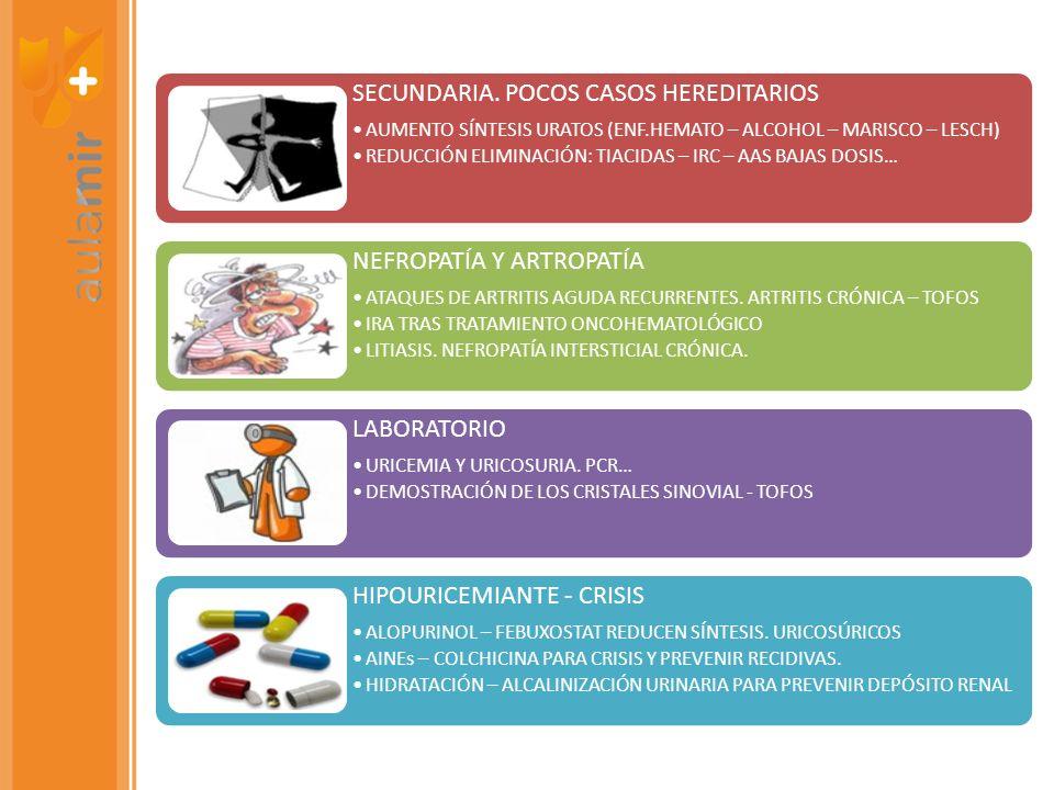 SECUNDARIA. POCOS CASOS HEREDITARIOS AUMENTO SÍNTESIS URATOS (ENF.HEMATO – ALCOHOL – MARISCO – LESCH) REDUCCIÓN ELIMINACIÓN: TIACIDAS – IRC – AAS BAJA