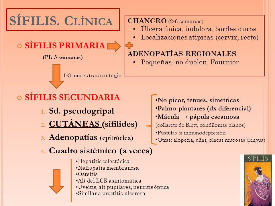 SÍFILIS PRIMARIA (PI: 3 semanas) SÍFILIS SECUNDARIA 1. Sd. pseudogripal 2. CUTÁNEAS (sifílides) 3. Adenopatías (epitróclea) 4. Cuadro sistémico (a vec