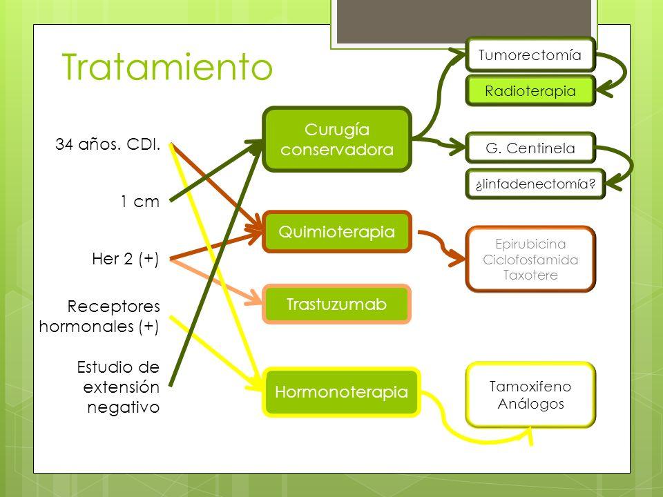 Tratamiento Trastuzumab Radioterapia Quimioterapia Epirubicina Ciclofosfamida Taxotere Hormonoterapia Tamoxifeno Análogos 34 años. CDI. 1 cm Her 2 (+)