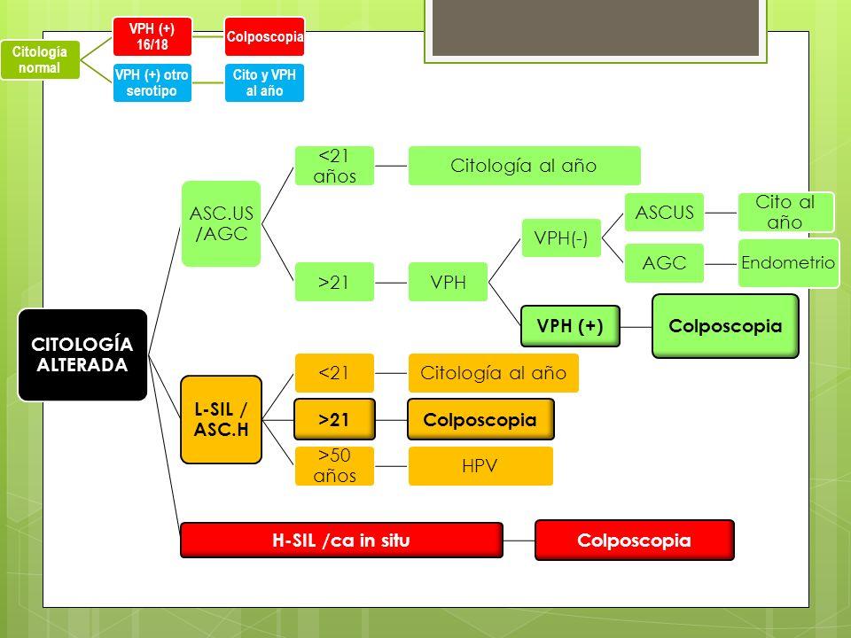 CITOLOGÍA ALTERADA ASC.US /AGC <21 años Citología al año>21VPHVPH(-)ASCUS Cito al año AGC Endometrio VPH (+) Colposcopia L-SIL / ASC.H <21Citología al