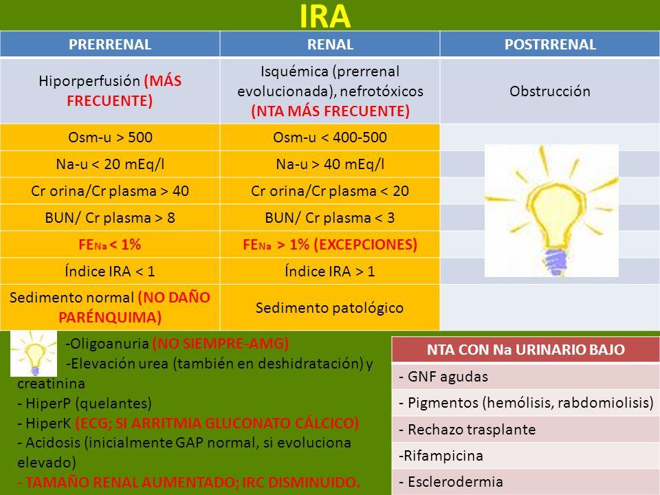 IRA PRERRENALRENALPOSTRRENAL Hiporperfusión (MÁS FRECUENTE) Isquémica (prerrenal evolucionada), nefrotóxicos (NTA MÁS FRECUENTE) Obstrucción Osm-u > 5