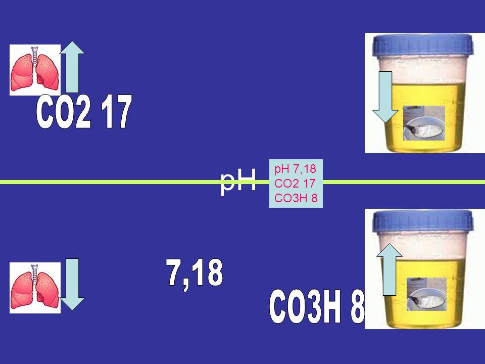 pH pH 7,52 CO2 17 CO3H 15