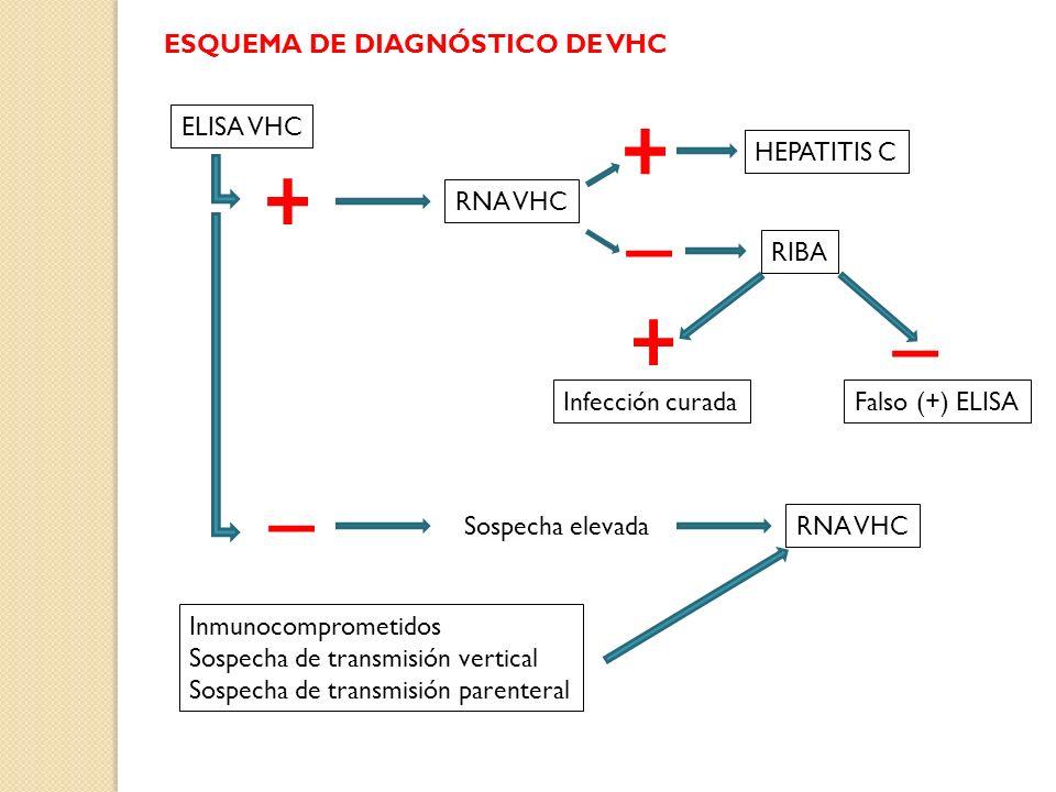 ELISA VHC RNA VHC HEPATITIS C RIBA Infección curadaFalso (+) ELISA Sospecha elevada RNA VHC Inmunocomprometidos Sospecha de transmisión vertical Sospe