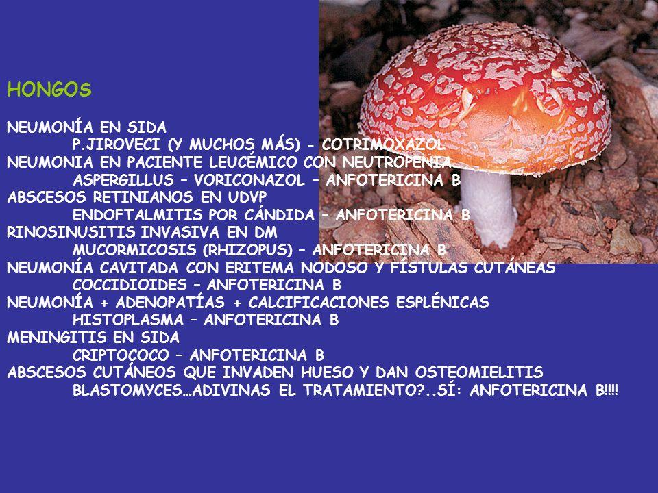 GUSANITOS Y PROTOZOOS FIEBRE + ADENOPATÍAS + SOMNOLENCIA T.BRUCEI – MELARSOPROL NEFROPATÍA MEMBRANOSA E HIPERTENSIÓN PORTAL ESQUISTOSOMA – PRACICUANTE