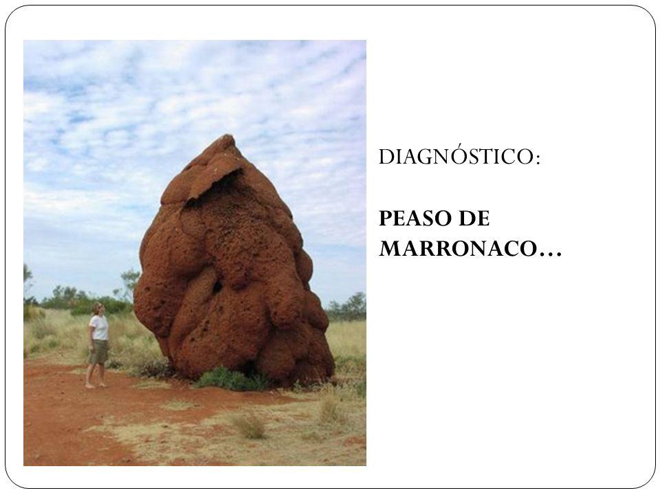 DIAGNÓSTICO: PEASO DE MARRONACO…