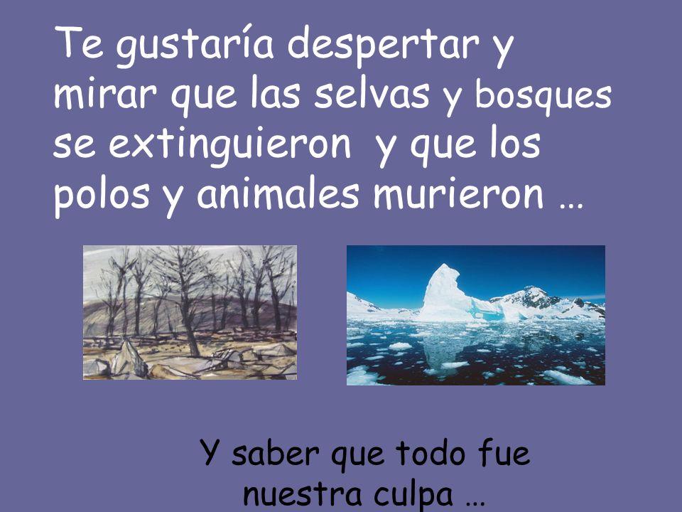Te gustaría despertar y mirar que las selvas y bosques se extinguieron y que los polos y animales murieron … Y saber que todo fue nuestra culpa …