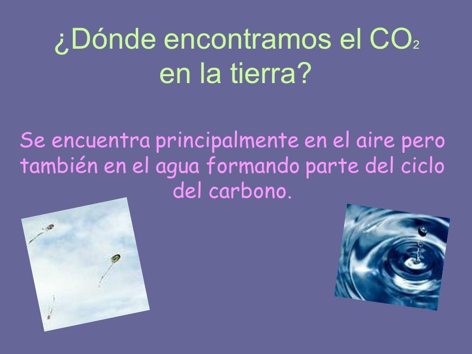 ¿Dónde encontramos el CO 2 en la tierra? Se encuentra principalmente en el aire pero también en el agua formando parte del ciclo del carbono.